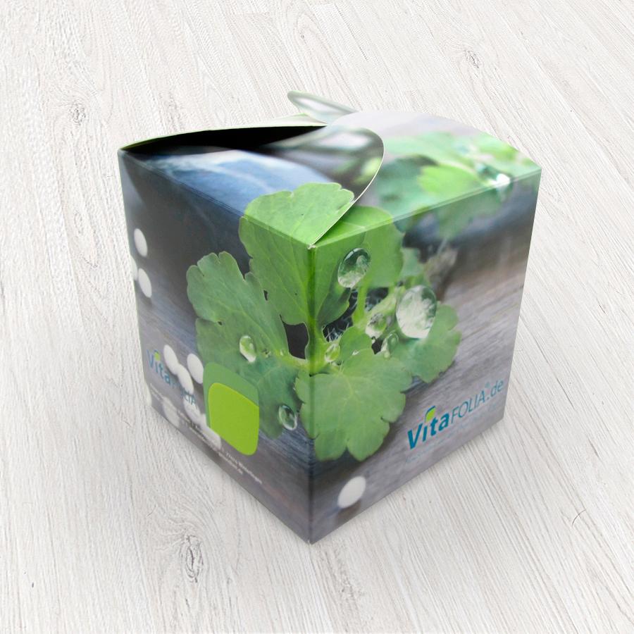 Musterbox für homöopathische Produkte